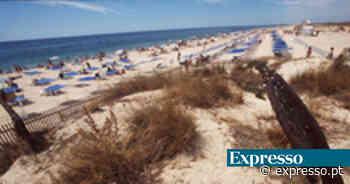 Algarve: Praia do Barril esteve fechada após avistamento de tubarao - Expresso
