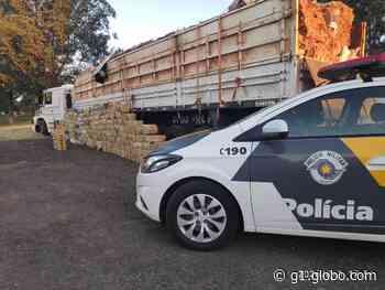 Polícia Rodoviária apreende carga de maconha escondida em carreta em Presidente Prudente - G1