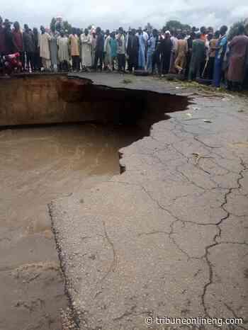Flood washes away farmlands, destroys houses in Bauchi - NIGERIAN TRIBUNE