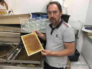 Ham-sur-Meuse : Olivier Duchateau et ses ruchers d'abeilles noires - L'Ardennais