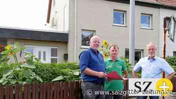 Startschuss für energetische Stadtentwicklung in Helmstedt - Salzgitter Zeitung