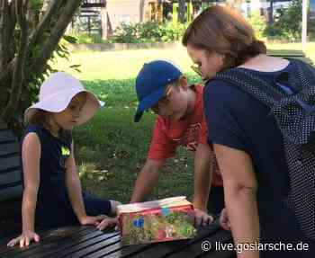 Ferienpass-Aktion der Tourist-Information - GZ Live