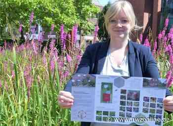 Initiative In Cloppenburg: Stadt wirbt für naturnahe Gärten - Nordwest-Zeitung