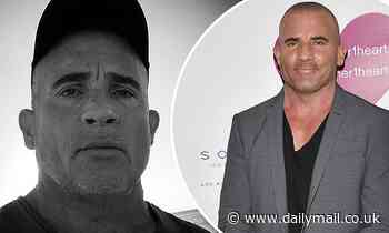 Prison Break star Dominic Purcell tells Americans to 'grow up'