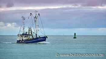 Krabbenfischer in Cuxhaven bangen wegen Corona um ihre Existenz - buten un binnen
