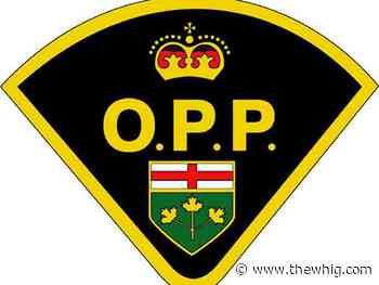 Crews searching for man who fell from ferry - The Kingston Whig-Standard