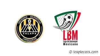 La LBM aclara rechazo del equipo Cremonesse de Xalapa - Los Pleyers