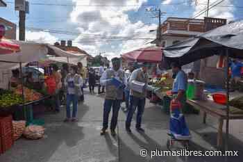 Distribuyen 2 mil cubrebocas en tianguis de la calle Toluca de Xalapa - plumas libres