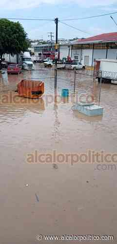 Lluvia inundó calles de Xalapa, este viernes - alcalorpolitico