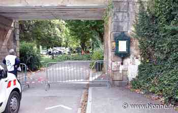 Opération en cours au parc de l'Arbre-Sec à Auxerre pour dégager deux arbres tombés lors des orages - L'Yonne Républicaine