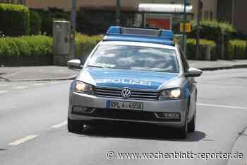 Verkehrsschild und Verkehrsinsel in Germersheim gerammt: Polizei sucht Mercedes-Fahrer - Germersheim - Wochenblatt-Reporter