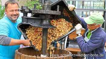 Nagold: 16. Äpfelfest abgesagt - Nagold - Schwarzwälder Bote