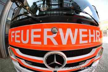 Feuerwehr wird zu Böschungsbrand gerufen - und erlebt eine Überraschung - Ruhr Nachrichten