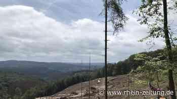 Forstamsleiter Michael Weber: Wald der Zukunft ist große Herausforderung - Rhein-Zeitung