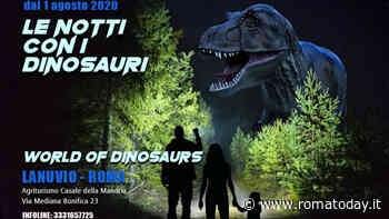 Le notti con i dinosauri