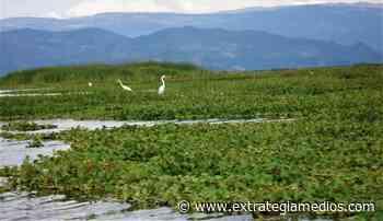 Más de 246.000 m³ de sedimentos de la Laguna De Fúquene - Extrategia Medios