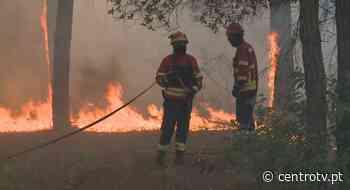 Mais de 100 operacionais e 5 meios aéreos combatem fogo em Leiria - CentroTV