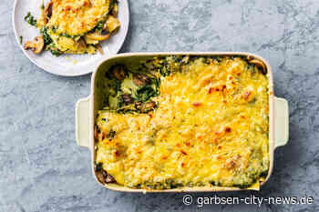 Spinat Pilz Lasagne - Garbsen City News