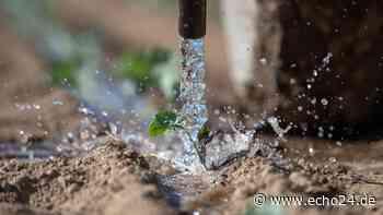 Heilbronn: Wasser wird wegen Trockenheit knapp – harte Konsequenzen folgen - echo24.de