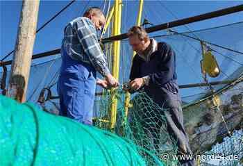 Corona: Für die Kutterfischer wird die Lage zunehmend bedrohlicher - Nord24