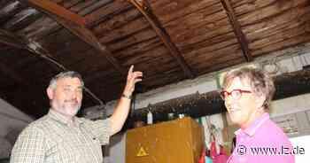Mit den Schwalben zieht bei Familie Brink in Lage Glück ins Haus | Lokale Nachrichten aus Lage - Lippische Landes-Zeitung