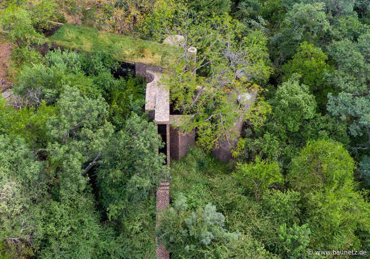 Autark zwischen Baumkronen  - Villa von Frankie Pappas in Südafrika