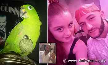The 28-year-old bird lover threatened the 23-year-old frightened ex-girlfriend with baseball after walking with the parrot
