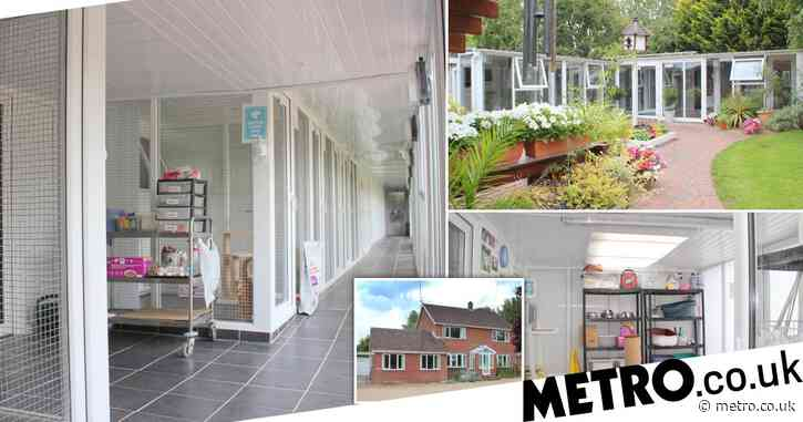 Couple sell four bedroom house for £ 850,000 and it comes with a cattery that fits almost 100 cats