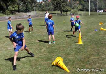Beim Fußballcamp des FSV Weiler zum Stein standen Spiel und Spaß im Vordergrund, nicht Wettbewerb und Leistung - Leutenbach - Zeitungsverlag Waiblingen