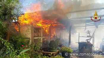 Incendio sulla Cassia, brucia un vivaio: salvati i proprietari