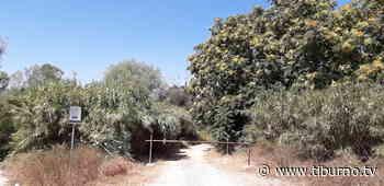 I laghetti di Semblera, il monumento naturale di Monterotondo - Tiburno.tv Tiburno.tv - Tiburno.tv