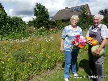Blumen sind das Lebenselexier von Inge Quast - TAGEBLATT - Lokalnachrichten aus Jork. - Tageblatt-online