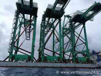 """GIOIA TAURO (RC) – Rosy Perrone su: """"Bene incremento traffico Container, da oggi sia volano per la Zes!"""" - VeritasNews24"""