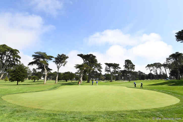 TPC Harding Park Profile: Municipal Gem Hosts The PGA Championship