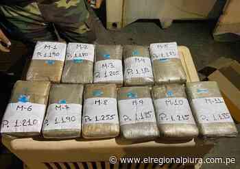 Paita: Fiscalía y policía antidrogas incauta contenedor con estupefaciente - El Regional