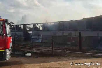 Viele tote Kühe und hoher Schaden nach Stallbrand bei Magdeburg - TAG24