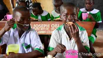 Sokoto: BESDA pledges to enrol 300,000 out-of-school children in 4 years - Naija247news