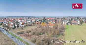 Konflikte bremsen den Wohnungsbau in Pfungstadt - Echo Online