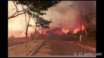 Incêndio atinge área de mata próximo a UPA de Parauapebas, no sudeste do Pará - G1