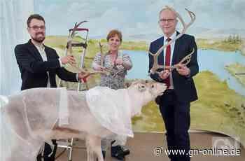 Archäologische Ausstellung in Meppen im Aufbau - Grafschafter Nachrichten
