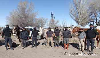 No era el puma: Policía recuperó ovejas en allanamientos - infohuella.com.ar