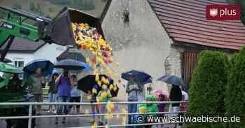 1100 Plastikenten rennen bei Regen auf der Schmiech - Schwäbische