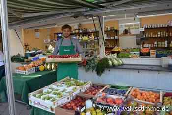 Stendal: Ein Tag als Obstverkäufer - Volksstimme
