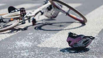 Radfahrer bei Unfällen mit Tieren verletzt - Radio Lausitz