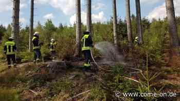 Waldbrand in Balve: Feuerwehr bekämpft Flammen auf unwegsamen Gelände - come-on.de