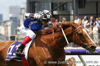 Coffs Harbour Cup Field – 2020 - Just Horse Racing