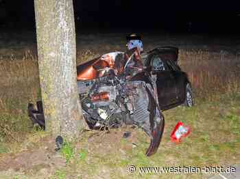 Frontal gegen einen Baum gefahren - Westfalen-Blatt