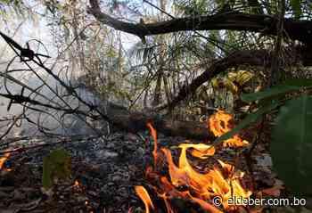 Paralizan las autorizaciones de quemas en Santa Cruz para evitar incendios forestales - EL DEBER