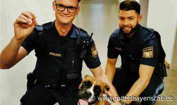 """Bella macht """"Praktikum"""" bei der Polizei - Region Amberg - Nachrichten - Mittelbayerische"""