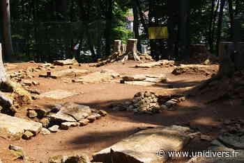 Visite guidée gratuite de la nécropole mérovingienne d'Audun-le-Tiche Nécropole mérovingienne samedi 19 septembre 2020 - Unidivers